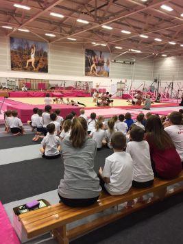 Durham Dales Schools Gymnastics Festival