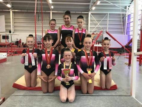 North Voluntary Levels 2018
