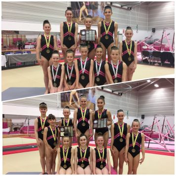 North Voluntary Team Championships 2017